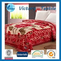 Printed Microfiber Acrylic Super Soft Mink Blanket Spain