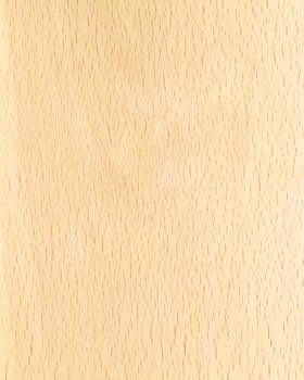 White Beech Fancy Plywood