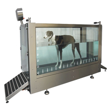 Medical Electric Underwater Treadmill For Dog