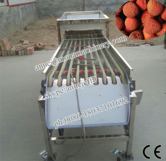 Olive kiwi Fruit Grader/fruit Production Line