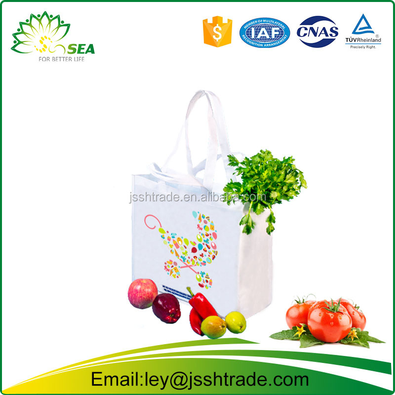 eco friendly plastic mesh bag fruits malaysia/Non Woven shopping Plastic Bag