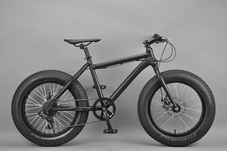 20 inch Fat bike chinese dirt bike brands