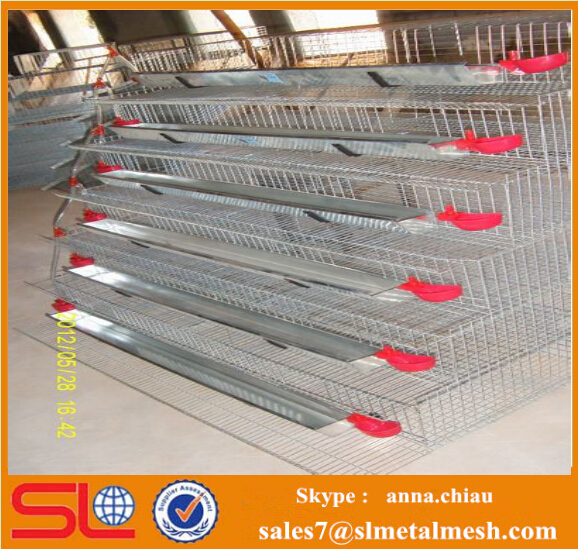 quail battery cages /metal quail cage / pyramid quail cages for sale