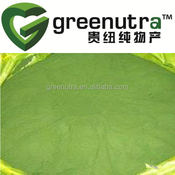 chlorella vulgaris powder