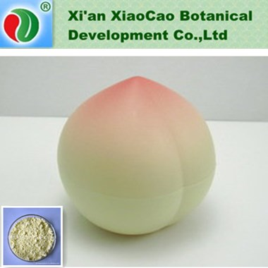 Factory Supply Red Radish Extract,Black Radish Extract