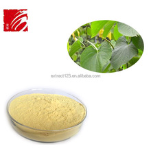High Quality kava kava seeds extract powder/30% Kavalactones