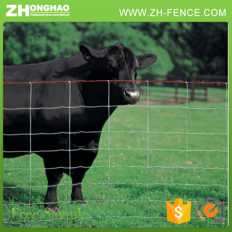 165 Inch Or 330 Inch Cattle Fence (Hot Sale)