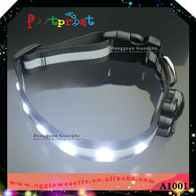 Latest hot sale led pet products