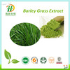 GMP Standard Manufacturer Supply Barley Grass Extract 5:1,10:1,30:1 /Vitamin K flavonoids