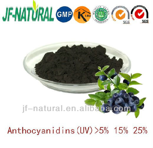 100% natural Bilberry fruit extract Dark violet powder