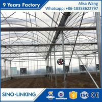 SINOLINKING Hydroponic Systems With Aeroponic Greenhouse