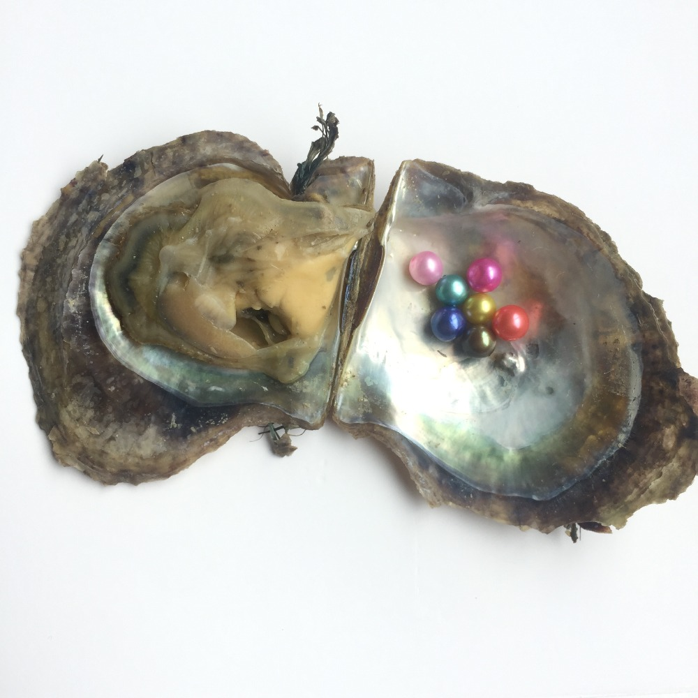 Vacuum-packed 7-8mm Akoya Oysters With Round Pearls