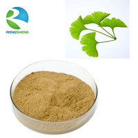 Professional manufacturer supply natural ginkgo biloba P.E.