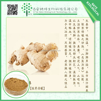 HOT selling ginger root extract/free sample 5:1 10:1 20:1 Gingerols/ low priceZingiber officinale powder