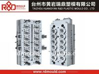 2012 hottest pet preform mould
