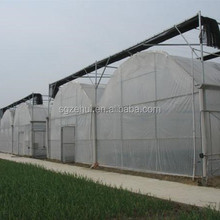beautiful agricultural Multi-span film greenhouse