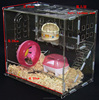 Home garden plexiglass/PMMA/lucite clear acrylic pet cage,eco-friendly acrylic animal pet cage