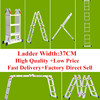 Augest Hot Sell Multipurpose Ladder Folding