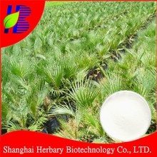 Saw palmetto fruit extract 25%-45% 5:1,10:1,20:1