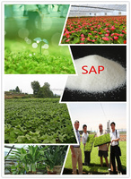 Starch sap biodegradable polymers for agriculture use