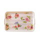 Plastic Custom Melamine Serving Tray with Handle