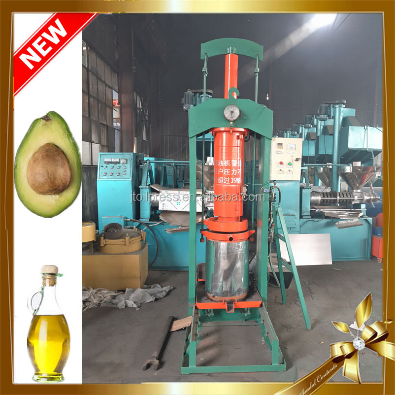 UK camellia carya seeds low cost commercial cold olive hydraulic oil press