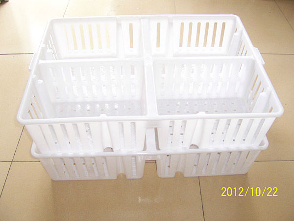 circulating chicken cage for poultry