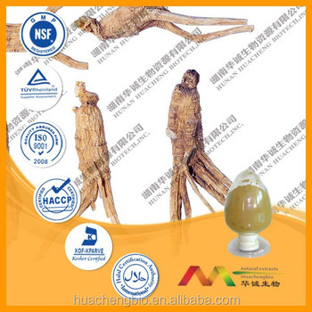 2015 best sales product Dong guai Extract
