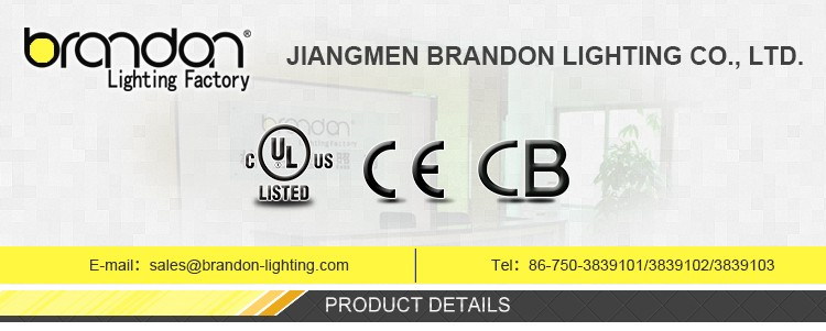 100% good quality cheap modern led fluorescent ceiling lamp single or double tube light fitting