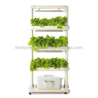 LED Hydroponic Cultivator : New Trend! Indoor Gardening with Grow Lamp (DHL-H3)