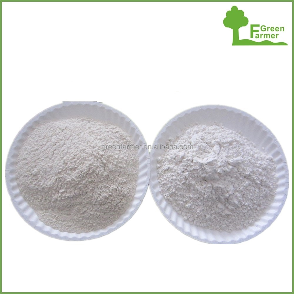 China cheap price dried garlic powder