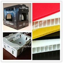 Corrugated Plastic Cardboard Boxes for Fruit and Vegetables Packaging