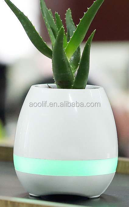 New plant which can sing with Bluetooth speaker ,design for you