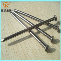 Iron Material Type Hot Sale Common Nail