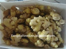 China market price air dried fresh ginger size 150g up