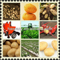 2CM-2 two rows tractor driven sweet potato planter