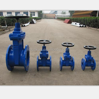 PN16 Flanged type stem gate valve with prices
