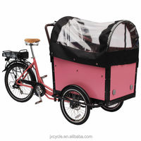 diesel cargo tricycle/brushless 3 Wheel Bicycle For Sale