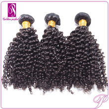 Unprocessed Wholesale Raw Virgin Brazilian Curly Hair Weave Natural Black Color Cheap 100 Remy Human Hair Afro Kinky Curly