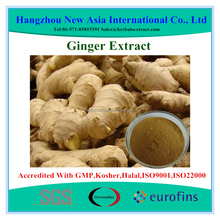 High Quality Ginger Extract Gingerols 1%-10% HPLC