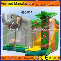 For home and mall inflatable tropical bouncy and slide