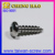 Stainless Steel Square Drive Pan Head Self Tapping Screws