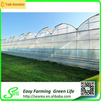 High tunnel multi-span tomato greenhouse farming equipment