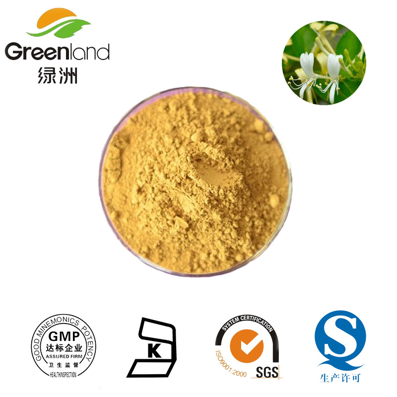 Honeysuckle Extract/HoneySuchle Flowers Extract with Chlorogenic acid