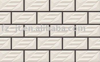 External Wall Tiles100*200mm