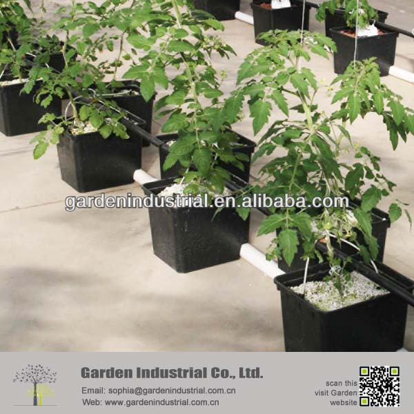 Soil Amendment Perlite Soil