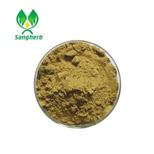 wholesale Best Quality Bulk Powder Nutgrass P.e.powder Cyperus Extract