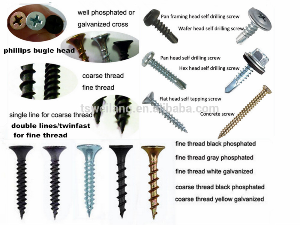 The Three Types Of Gypsum ~ All sizes of galvanized drywall screws buy