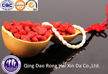 Ningxia Organic Goji berry/Wolfberry/New Season fresh Dried Goji berry/medlar