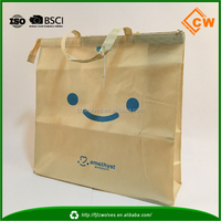 Fashionable style tote nonwoven zipper packaging bag travelling bag china supplier
